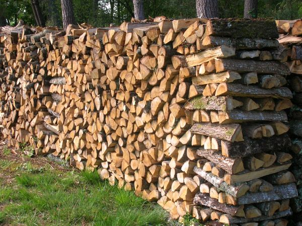 Combien de temps le bois de chauffe doit il s cher - Frene bois de chauffage ...
