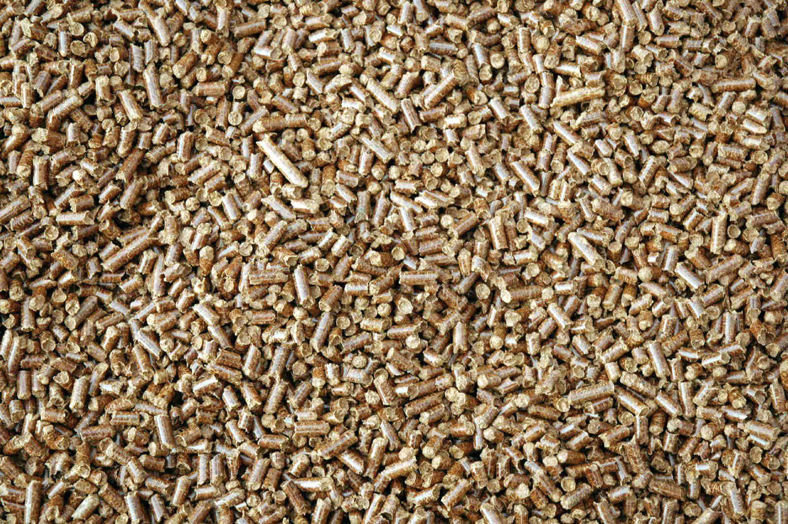 Granulés de bois, aussi appelés pellets.